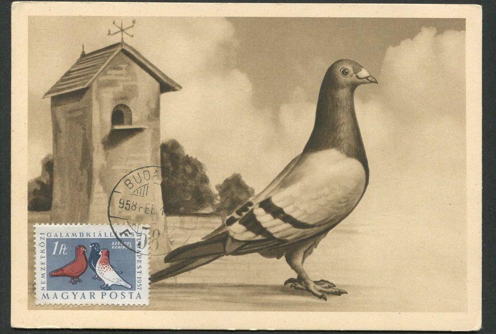Von der Postkarte zum Messenger